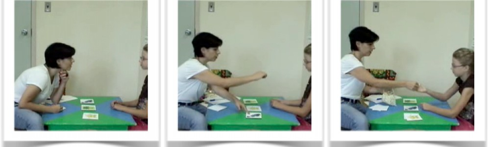 Discrete Trials Teaching With Children With Autism A Self